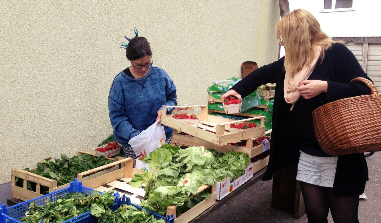 Foodsharing in Heidelberg