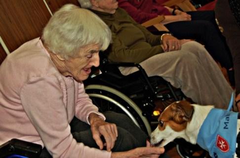 Altenheimbewohnerin mit Malteserhund